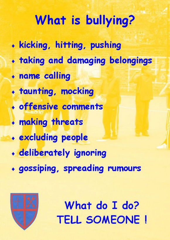 What is YOUR definition of bullying?
