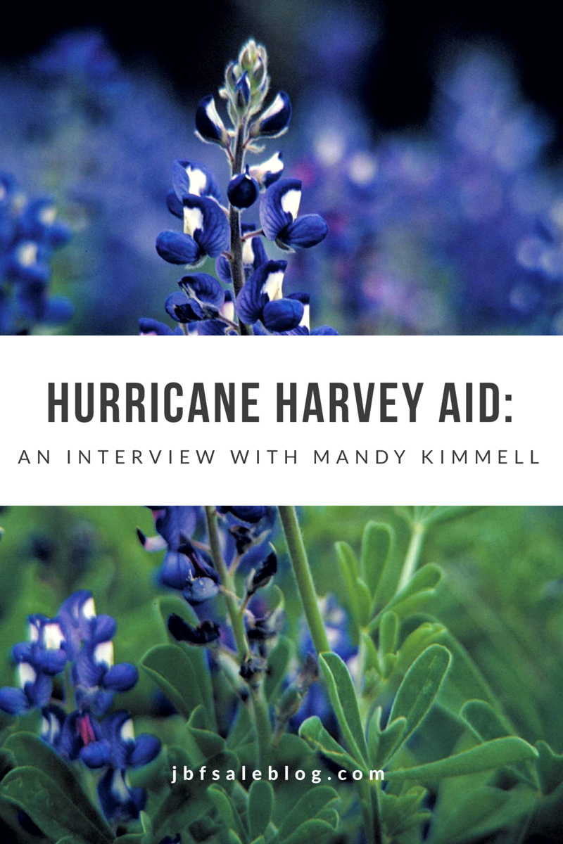 Hurricane Harvey Aid: An Interview With Mandy Kimmell