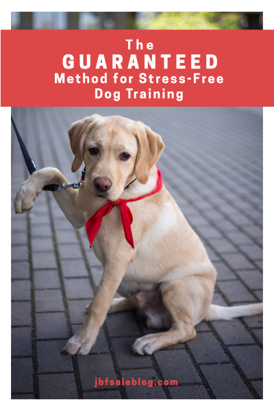 The Guaranteed Method for Stress-Free Dog Training