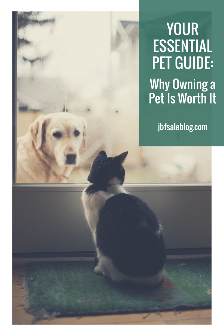 Your Essential Pet Guide